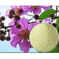 Buy cheap 5%20%40%corosolic acid,Banaba Leaf Extract,Lagerstroemia speciosa extract  CAS: 4547-24-4 from wholesalers