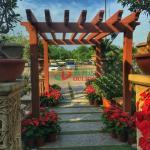 Buy cheap Customized Outdoor Garden Pergola Kits Environmental Friendly No Painting No Painting from wholesalers
