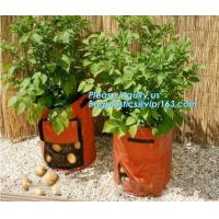 Buy cheap 100 /200/300 gallon tan tree grow bag 100gallon grow bag for plant trees,vegetables grow bags planting bags growing bags from wholesalers