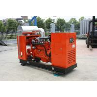 Buy cheap 120KW Cummins Natural Gas Generator With Brushless Synchronous Alternator Powered from wholesalers