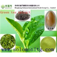 Buy cheap Organic Green tea extract, with active ingredients EGCG, L-theanine, Tea Polyphenol from wholesalers