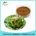 Buy cheap Hot Product Bulk Food Grade Jerusalem Artichoke Extract Lunlin 90% Powder from wholesalers