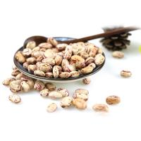 Buy cheap Wholesale cheap price  light speckled kidney beans sugar bean pinto bean for export from wholesalers