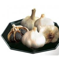 Buy cheap Health Japanese ferment black garlic from wholesalers
