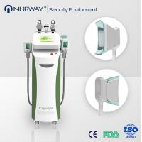 Buy cheap Vertical Cryolipolysis fat freeze slimming machine for beauty clinic product