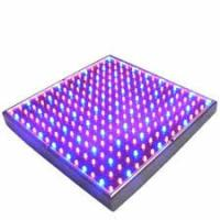 Buy cheap Full Spectrum SMD Indoor LED Grow Lights 50 Watt For Breeding / Farmland , 315x310mm from wholesalers