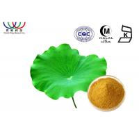 Buy cheap Nelumbo Nucifera Leaves Extract Powder , Pure Natural Botanical Extracts from wholesalers
