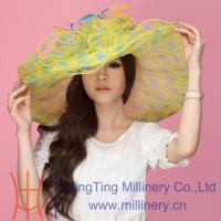 Buy cheap Stylish Elegant Organza Hats Wholesale for Ladies in 2014 from wholesalers