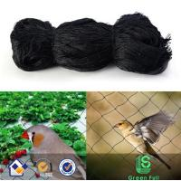 China HDPE anti bird knotted netting for bird trap from china, catching bird net,bird protection netting on sale
