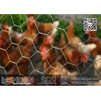 Buy cheap Hexagonal Chicken Wire Mesh from wholesalers