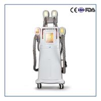 Buy cheap China Factory Cryolipolysis Slimming Machine Fat Removal Beauty Machine from wholesalers