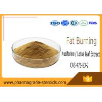 Buy cheap Nuciferine Lotus leaf Extract Pharmaceutical Raw Materials CAS 475-83-2 Fat Burning from wholesalers