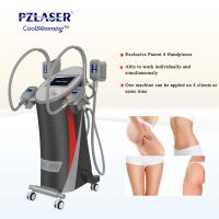 Buy cheap CE Cool Tech Cryolipolysis Fat Freeze Slimming Machine For Weight Loss from wholesalers