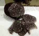 Buy cheap Black Truffle noire Wild perigord truffle Tuber melanosporum organic sliced Hei Song lu from wholesalers