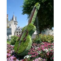 Buy cheap Outdoor Garden Topiary Art Musical Instrument Volin Topiary Artificial Plants Sculpture from wholesalers