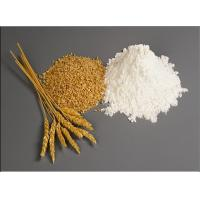 Buy cheap Wheat Gluten Meal Protein Content 75% Min , on Dry Basis , N X 5.7 HS code 1109.0000 from wholesalers