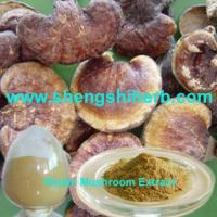 Buy cheap Reishi Mushroom Extract product