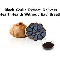 Buy cheap Healthy Black Garlic Extract Powder , Kyolic Aged Garlic Extract Anti - Oxidation from wholesalers