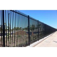 Buy cheap 2.4m X 2.4m SHS 65mm Tube Black Garrison Garden Fence Panels Security Spear Top Tubular Steel Fencing from wholesalers