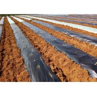 Buy cheap Agriculture orchard wildly used silver black perforated plastic mulch film punch hole price from wholesalers