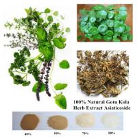 Buy cheap 100% Natural Gotu Kola Herb Extract Asiaticoside 95% powder from wholesalers
