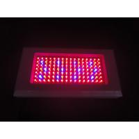 Buy cheap Full spectrum hydroponics 300w led grow light grow high efficient AC 85 ~ 265V from wholesalers