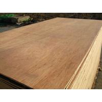 Buy cheap packing plywood / commercial plywood / furniture plywood from wholesalers
