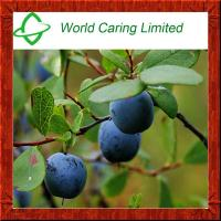 Buy cheap 100% Blueberry extract 25% Anthocyanidins or ratio extract for anti-oxidation from wholesalers