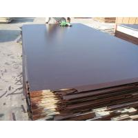 Buy cheap Brown Film-faced Plywood and Black Film Face Plywood, Construction Plywood from wholesalers