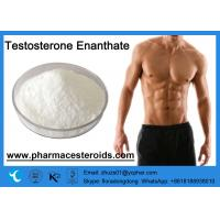 Buy cheap Testosterone Enanthate Cycle Raw Steroid Powders Test Enanthate for Muscle Mass from wholesalers