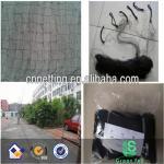 Buy cheap Anti sparrow net/sticky nets/Anti pigeon net/Bird mist net from wholesalers
