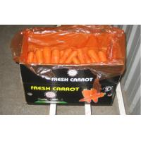 Buy cheap Pure Natural Fresh Organic Carrot Contains Vitamin C , Folic Acid from wholesalers