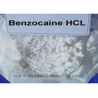 Buy cheap Benzocaine HCL Local Anesthetic Drugs 23239-88-5 For Pain Relief 99% Purity Benzocaine Hydrochloride from wholesalers