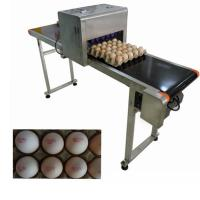 Digital Egg Jet Coding Machine Maintenance - Free With Pink / Green Food Grade Ink