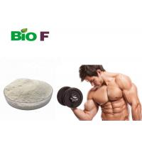 Buy cheap Boost Muscle Growth Natural Nutrition Supplements MK 2866 Prevent Muscle Wasting from wholesalers
