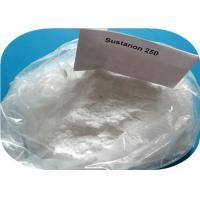 Testosterone Sustanon 250 Testosterone Blend , White Crystalline Weight Loss Powder