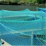 Buy cheap PE Fishing Twine Fishing Net from wholesalers