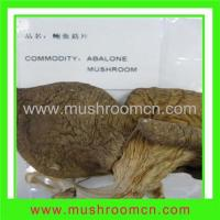 Buy cheap Dried Abalone Mushroom from wholesalers
