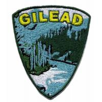 Buy cheap 3D embroidery digitizing patch heat cut border backing with heat seal GILEAD from wholesalers