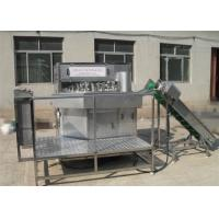 Apple Peeling Machine Fruit Canning Equipment Manual Feeding Custom Design