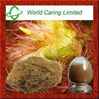 Buy cheap 100% High quality corn silk extract powder for Blood Glucose Control from wholesalers