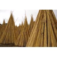 Buy cheap Tonkin Bamboo Poles Canes Stakes Sticks Fence Ladders product