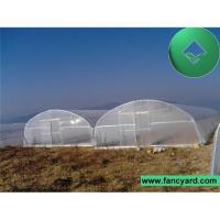 Buy cheap Commercial greenhouse,Poly Film Greenhouse,Agriculture Greenhouse,Tomato Greenhouse,Poultry Feeding from wholesalers