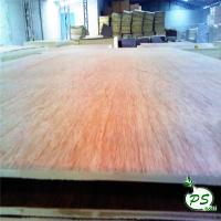 Buy cheap BB/CC commercial bintangor plywood with red face for sale from wholesalers