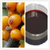 Buy cheap Natural Seabuckthorn Berry Oil / Seabuckthorn Seed Oil from wholesalers