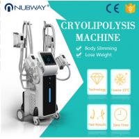 Buy cheap Factory price CE approved 4 cryo handles fat freezing weight loss cryolipolysisfa cool sculpting  machine from wholesalers