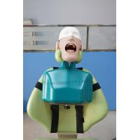Buy cheap Top Quality Dental Manikin Head with Torso for Dental Chair product
