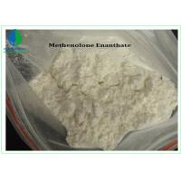 Pharmaceutical Intermediate Methenolone Enanthate / Primobolan Depot Raw Steroid Powder CAS 303-42-4