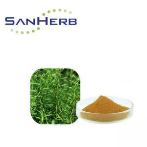 Buy cheap Carnosic Acid Rosemary Extract Powder , Rosmarinic Acid Rosemary Leaf Powder product