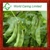 Buy cheap Weight Loss Ingredient White Kidney bean extract Herbal Extract from wholesalers